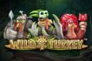 wild-turkey-thumb tasuta mängud tasuta mängud wild turkey thumb 133x88